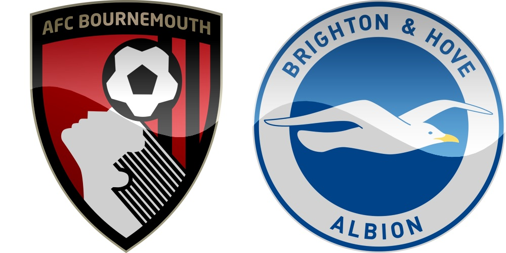 24.kolo Premier League: Bournemouth vs Brighton [VIDEO]