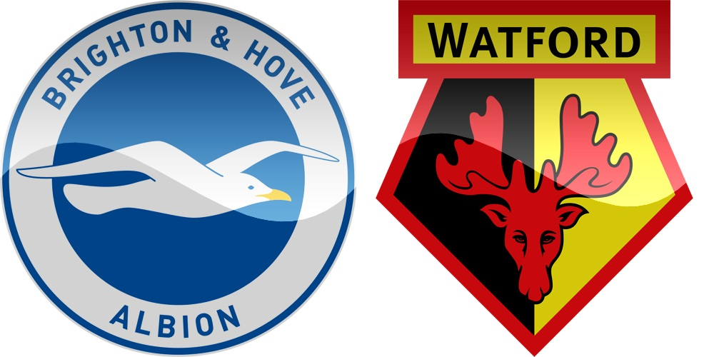 26.kolo Premier League: Brighton vs Watford [VIDEO]
