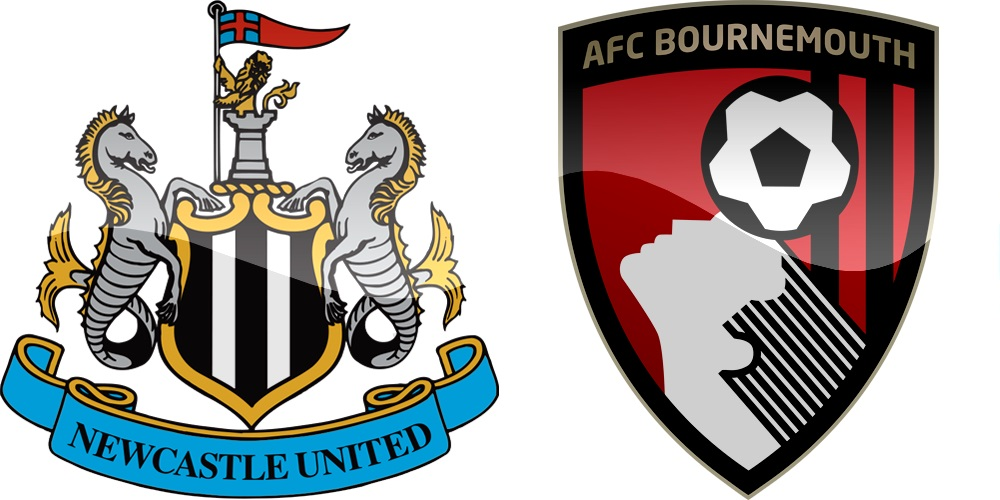 12.kolo Premier League: Newcastle vs Bournemouth [VIDEO]