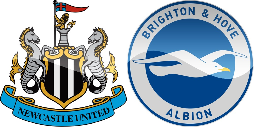 6.kolo Premier League: Newcastle vs Brighton [VIDEO]