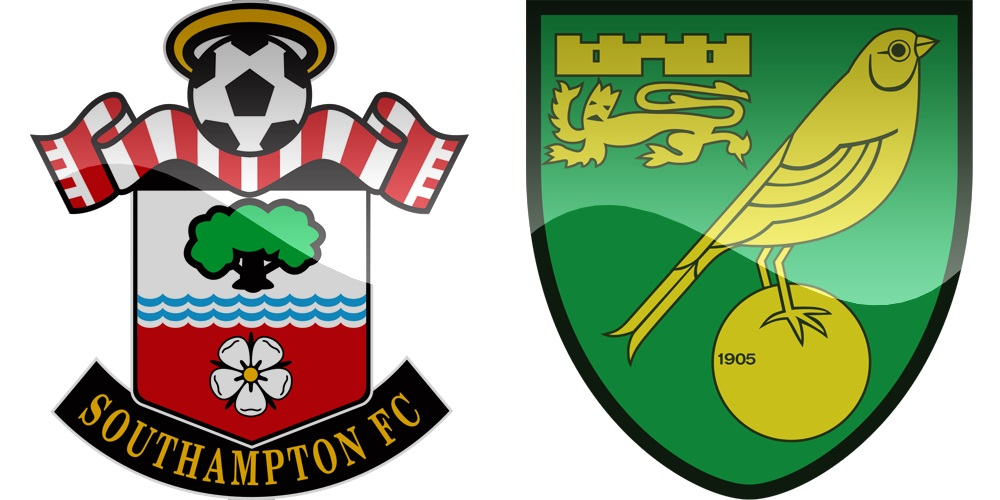 15.kolo Premier League: Southampton vs Norwich [VIDEO]